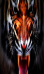 Tiger Live Wallpaper Free screenshot 2/5