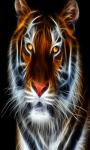 Tiger Live Wallpaper Free screenshot 3/5