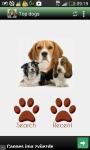 Top dogs screenshot 1/6