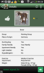 Top dogs screenshot 3/6