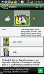 Top dogs screenshot 6/6