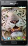 White Tiger Wallpapers screenshot 6/6