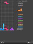 Tetris Blitz Mania screenshot 3/3
