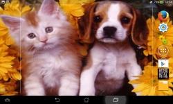 Puppies VS Kittens screenshot 4/6