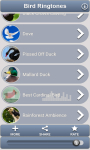 Bird Ringtones and Sounds screenshot 1/6