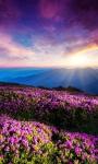 Beautiful Sunset Mountain views HD Wallpaper screenshot 6/6