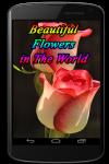 Beautiful Flowers in The World screenshot 1/3