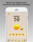 Puzzle 10 screenshot 5/5