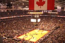 Toronto Raptors Fan screenshot 1/3