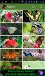 Natural Butterfly Wallpaper  screenshot 1/3