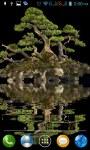 Bonsai tree LWP 2 screenshot 2/3