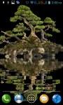 Bonsai tree LWP 2 screenshot 3/3