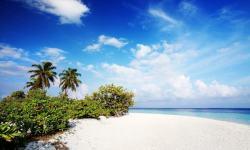 The Magnificent Tropical beach Live wallpaper screenshot 5/6