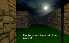 Epic Maze 3D screenshot 3/3