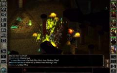 Icewind Dale Enhanced Edition new screenshot 3/6