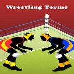 Wrestling Terms Lite screenshot 1/2