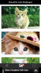 Beautiful Cats Wallpaper screenshot 2/6