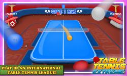 Table Tennis Extreme screenshot 5/6