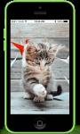 Wallpaper kittens screenshot 1/4