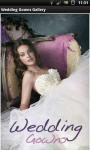 Wedding Gowns HD Gallery screenshot 1/6