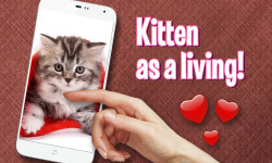 Pat Cute Kitten screenshot 1/3