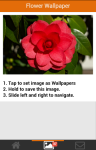 Flower Wallpapers App for Android screenshot 5/6