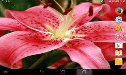 Unique Flowers Live screenshot 2/6