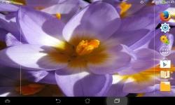 Unique Flowers Live screenshot 3/6