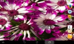 Unique Flowers Live screenshot 4/6