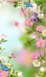 Flowers Wallpaper HD screenshot 1/3