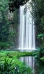 Jungle Waterfall Live Wallpaper screenshot 2/3