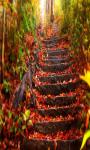 Nature Autumn Live Wallpaper Free screenshot 2/5