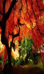 Nature Autumn Live Wallpaper Free screenshot 3/5