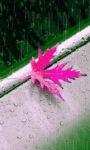Pink Leaf Live Wallpaper screenshot 1/3