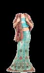 Indian Chaniya-Soli Photo Suit screenshot 3/4