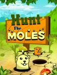 Hunt The Moles screenshot 1/3