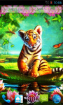 Little Tiger LWP screenshot 1/4