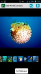 Sea World Animals screenshot 1/4