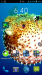 Sea World Animals screenshot 4/4