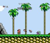 Hudsons Adventure Island screenshot 1/4