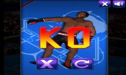 Ultimate Boxing 2015 screenshot 1/6