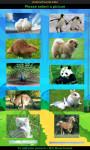 Animals Jigsaw Puzzles Free screenshot 1/3