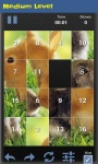 Slide Puzzle Animal screenshot 3/4