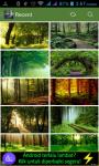 Forest HD Wallpaper screenshot 1/3