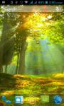 Forest HD Wallpaper screenshot 2/3
