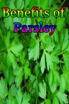 Benefits of Parsley screenshot 1/3