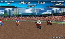 Speedway 3D screenshot 6/6