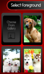 Zipper Lock Screen – Dogs screenshot 3/6