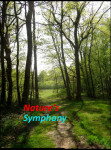 NATURE SYMPHONY MUSIC RELAX  screenshot 1/3