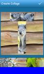 Alphabet Collages  screenshot 6/6